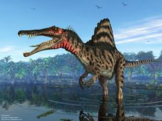 Of Dinosaurs | Mesozoic Earth - A Spinosaurus standing in a shallow estuary in ...