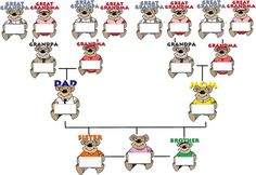 family tree ideas | Grove Creek Family History: Family History Activities for Children ...