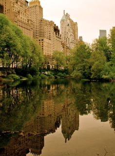Central Park, this is where my wedding ceremony is going to take place!!