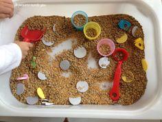 sensorial lentejas y semillas