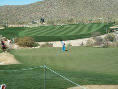 Dove Mountain Golf Course, Marana, AZ Baseball Field, Golf Courses, Soccer, Mountain, Places, Sports, Hs Sports, Futbol, European Football