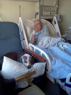 """Pit Bull Dog love...... Bless the hospital that allowed this"""