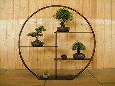 Foolproof Advice For Home Improvement Projects Bonsai Plants, Bonsai Garden, Garden Trees, Bonsai Trees, Asian Plants, Asian House, Plant Shelves, Display Shelves, Miniature Trees