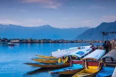 Private 4-Night Tour of Kashmir from Srinagar Soak yourself in the picturesque beauty of Kashmir, with a tour to its famous places, Srinagar and Gulmarg. Experience the magic of nature with a shikara ride on Dal Lake and stroll in the royal Mughal gardens. Embrace nature's beauty during a ride in the Gulmarg Gondola and then, explore the 110-year old St. Mary's Church. Thereafter, visit the much-famed Gulmarg Golf Club to witness its lush greenery and serene environs. ...