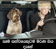 සති අන්තයේ අන්තර්ජාලයෙන් (84 වන සතිය) - Facebook Weekend Post Week 84- Hiru Gossip - Hiru Gossip, Gossip Lanka News | Hirugossip | Hiru Gossip | Hiru Fm Gossip | Hiru Gossip Official Web Site | Gossip Lanka - A Rayynor Silva Holdings Company