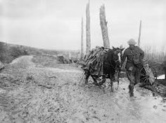 old photos of the somme - Google Search
