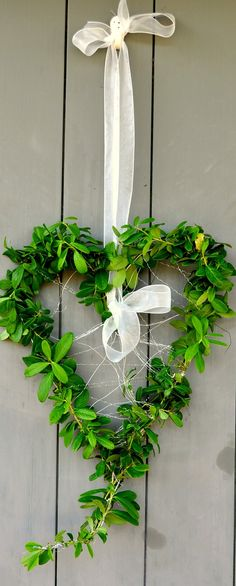 heart wreath!  Again add some red and white and call it Valentine's Day wreath.  What's the green stuff?  I can use my wild grape vine to make heart shape.