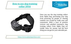 The remote dog training collars offered by Alpha Dog Collars are very safe, easily operable and do not cause any hindrance to the movement of your beloved dog.