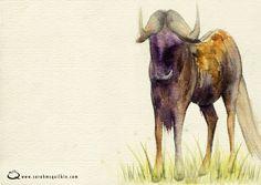 Sarah McQuilkin Illustration - Wildebeast