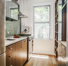 Architects' Favorite Kitchen Countertops   Remodelista IceStone