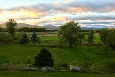 Maine fields