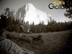 El Capitan - California  www.rocknride.eu