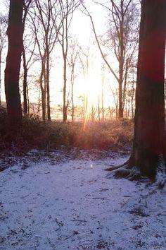 Ein Winter-Elfchen