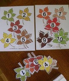 File folder leaf number match