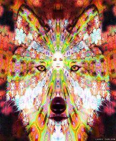 wolves are amazing creatures #Spirithoods #InnerAnimal