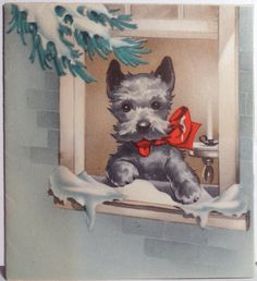 Here's trouble...in the window... ~ Scottish terrier Christmas illustration Scottie dog