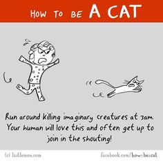 "Online Guide For ""How To Be A Cat"" Will Have You Cracking Up!"
