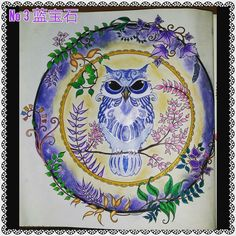 enchanted forest colouring book owl