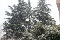 Quando neva em Milão é assim ;)