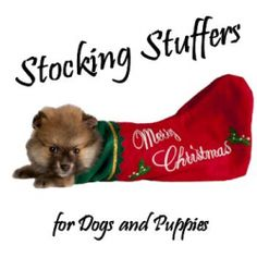 At my house, it wouldn't be Christmas without getting some stocking stuffers for the dogs! We have 3 dogs at various ages with three different...
