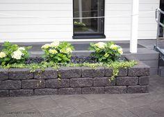 Asuntomessut 2016 Seinäjoki Pool Landscaping, House Front, Garden Inspiration, Container Gardening, Exterior Design, Outdoor Gardens, Outdoor Living, Garden Design, Home And Garden