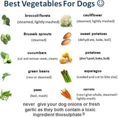 Best Vegetables For Dogs.