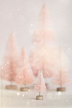 Are you looking for inspiration for christmas background?Navigate here for perfect Christmas inspiration.May the season bring you peace. Rose Gold Christmas Decorations, Christmas Colors, Christmas Themes, Holiday Ideas, Cute Christmas Wallpaper, Christmas Background, Miniature Christmas Trees, Noel Christmas, Pink Christmas Tree