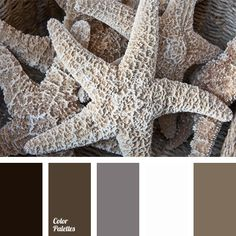 Free collection of color palettes ideas for all the occasions: decorate your house, flat, bedroom, kitchen, living room and even wedding with our color ideas | Page 362 of 413.
