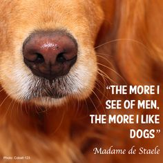 """""""The more I see of men, the more I like dogs""""   Inspirational pet quotes   My Pet Warehouse   #dogs #pets #quotes"""