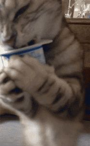⭐Yogurt Monster....Great gif!!⭐