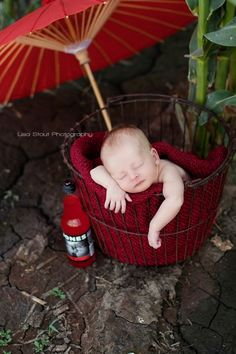 I need one of these little baskets so bad! I am seeing them everywhere in newborn photo shoots!