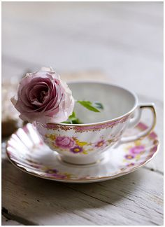 Fine china and roses