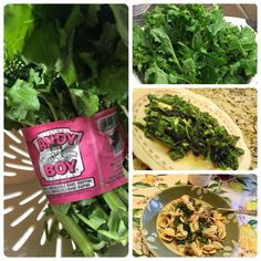 Oh, boy! Andy Boy Broccoli Rabe is the best! Always fresh and always delish! Broccoli Rabe Recipe, Antipasto, Wine Recipes, Food Art, Delish, Garlic, Fresh, Vegetables, Cooking
