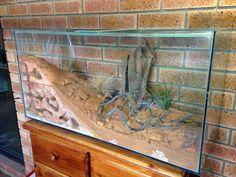 Formicarium of the — Gamergate Terrariums, Gecko Terrarium, Reptile Terrarium, Reptile Habitat, Reptile Room, Reptile Cage, Ant Species, Snake Enclosure, Formicarium