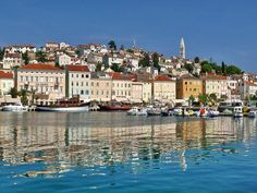 Losinij Island, Dalmatia, Croatia