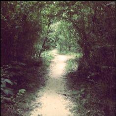 Path:)