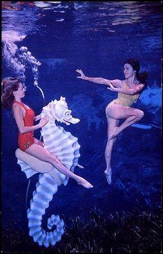 Vintage Photo: Weeki Wachee Mermaids FL