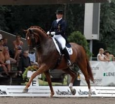 Isabell Werth rides Warum Nicht (Hannes) in competition. The pair won the 2007 World Cup. | Photo by Barbara Schnell