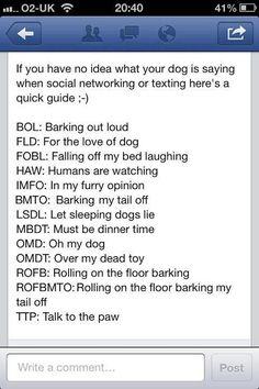 Dog Texting
