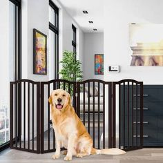 Keeping your pets contained without sacrificing style and functionality has never been easier with the Freestanding Pet Gate by Petmaker. Recommended for pet Pet Gate With Door, Tall Pet Gate, Retractable Gate, Pet Barrier, Dog Supplies Online, Pet Supplies, Small Doors, White Paneling, Doorway