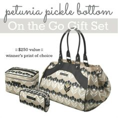 Petunia Pickle Bottom On the Go Pack #giftstowin
