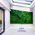 "Artisan Moss' zero-maintenance living walls are beautiful and lightweight ""plant paintings"" that can last for decades."