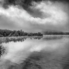 mono,monochrome,black and white,tree, foggy,mist,water ,tree,forest,reflection,sunset, sunrise,lake,sunrys, mountain,water,sky,clouds,outdoors, nature, landscape,reflections,exterior, europe, photography, landscapes, spain, granada,peace,
