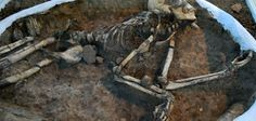 """nother 'vampire' burial found in Bulgaria. Archaeologists working on Bulgaria's Perperikon site have found the skeleton of a male buried with a ploughshare in its chest, a find that professor Nikolai Ovcharov has already described as a """"twin of the Sozopol vampire.""""   Over 100 'vampire' graves have been found in Bulgaria in recent years [Credit: Hristina Dimitrova]"""