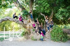 I love climbing trees anyway - but what a great family photo idea! :)  Yay for big families and cramming everyone into one tree! :)