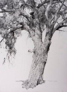 Pencil drawings, drawings и landscape drawings. Tree Drawings Pencil, Landscape Pencil Drawings, Landscape Paintings, Tree Sketches, Drawing Sketches, Art Drawings, Graphite Art, Graphite Drawings, Inspiration Drawing