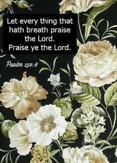 Psalm 150:6 KJV