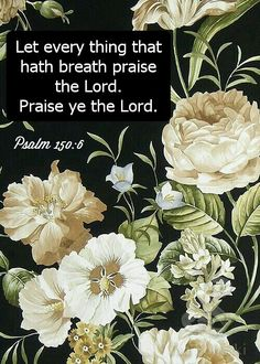 👼💕Hug Me Jesus👼💕 ❤JESUS LOVES US❤ 👼💕Shirley's💕Love💕👼 🙏PRAYER🙏 👼💘🙌AMEN👼💘🙌 PSALM 150:6 6. Everything that breathes, praise the Lord! Praise the Lord! ❤JESUS LOVES US❤
