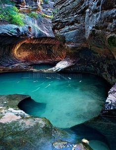 Discover the secrets of Zion National Park. Well of Secrets, Zion National Park, UT by Shane McDermott Places Around The World, Oh The Places You'll Go, Places To Travel, Travel Destinations, Places To Visit, Dream Vacations, Vacation Spots, Utah Vacation, Voyage Usa
