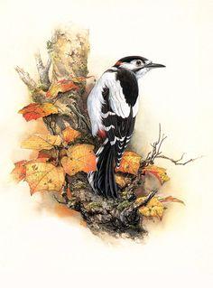 рисунки птиц на памятниках